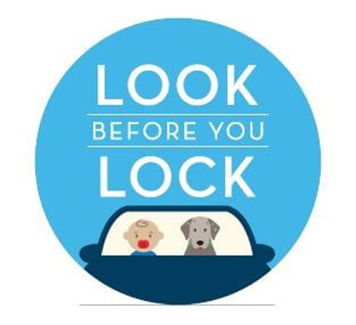 Look Before You Lock sticker