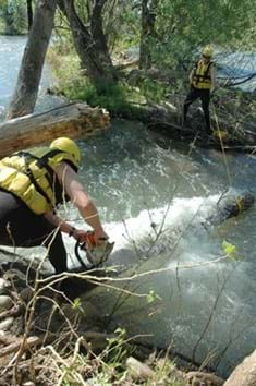 Two individuals in yellow life jackets and helmets use a chain saw to cut log in fast flowing river